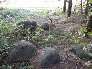 Cmentarzysko Jaćwingów w Jatwiezi Małej