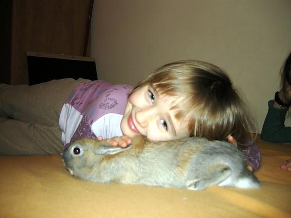 Niebo dla króliczków