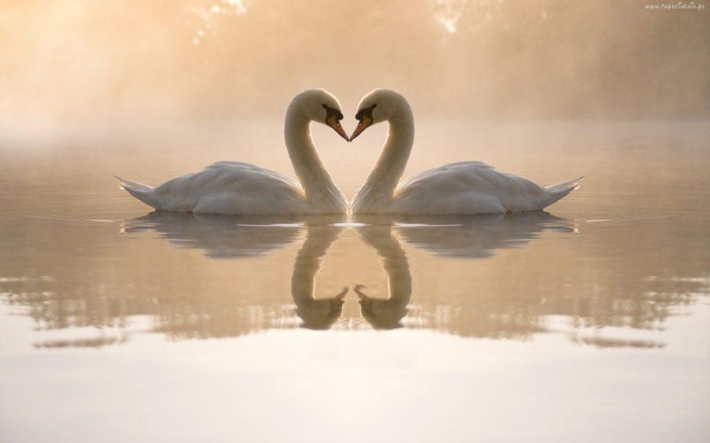 Przykazanie miłości w praktyce