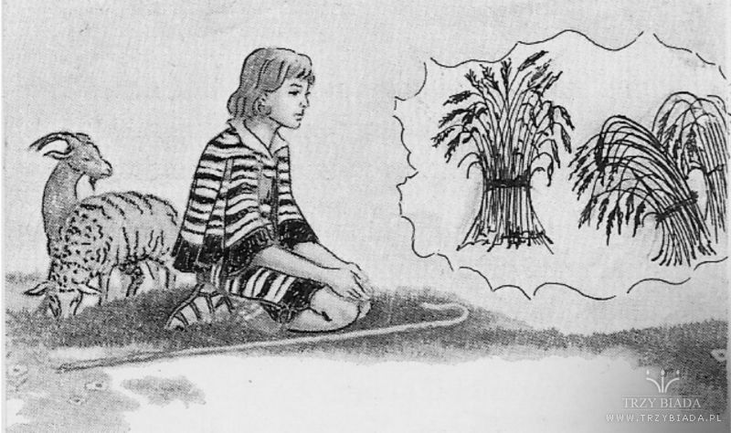 Znalezione obrazy dla zapytania sny Józefa syna Jakuba