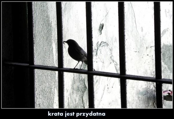 dzien_dziecka_3.jpg