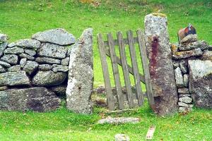 Kościół stracił więcej niż Pan Bóg? – Irlandia