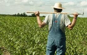 rolnik.jpg